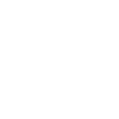 Instagram white icon